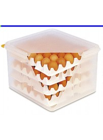 Boîte de stockage et transport des œufs